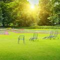 beautiful summer park - PhotoDune Item for Sale