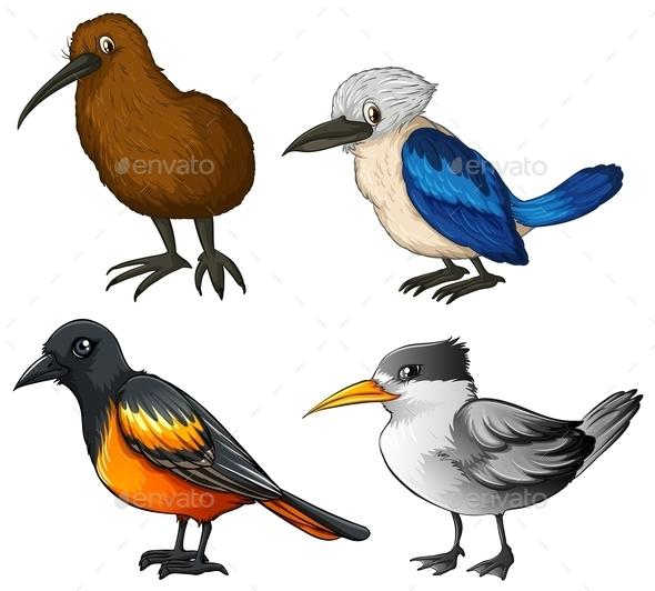 GraphicRiver Birds 10390378