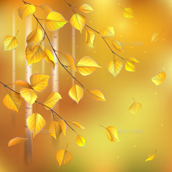 GraphicRiver Birch Branches 10391568