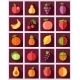 Fruits Flat Icon with Long Shadow - GraphicRiver Item for Sale