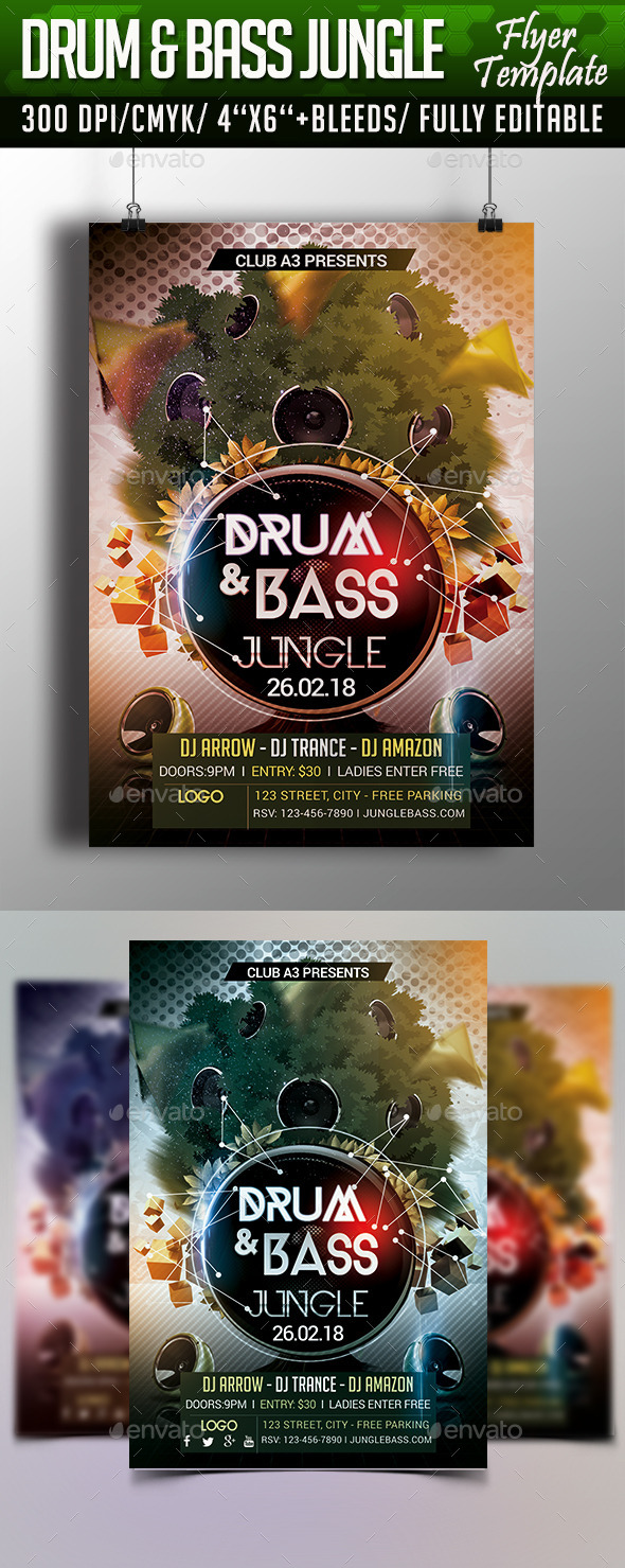 GraphicRiver Drum and Bass Jungle Flyer Template 10399254