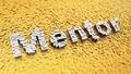 Pixelated Mentor - PhotoDune Item for Sale