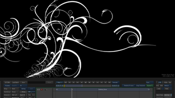 Project Files & Motion Graphics