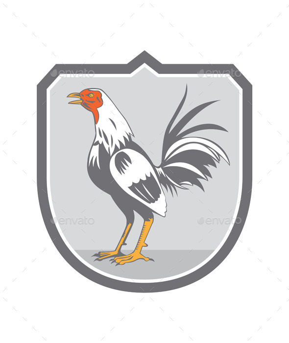 GraphicRiver Cockerel Rooster Standing Retro Shield 10412377