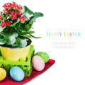 colorful easter eggs and spring flower - PhotoDune Item for Sale