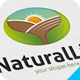 Natural Life Logo - GraphicRiver Item for Sale