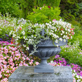 flower bed and stone vase with flowers - PhotoDune Item for Sale