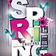 The Spring Emotions - GraphicRiver Item for Sale