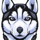 Siberian Husky - GraphicRiver Item for Sale