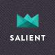 Salient - Responsive Multi-Purpose Theme - ThemeForest Item for Sale