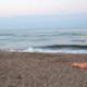Beautiful Woman Beach Sea Fun 29