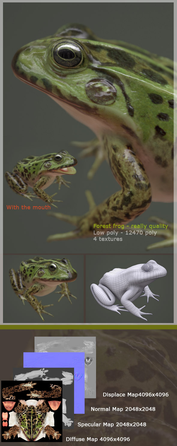 3DOcean HQ low poly 3D model of forest frog for animation 10424526