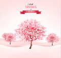 Spring background with blossoming sakura trees.  - PhotoDune Item for Sale