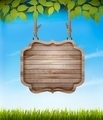 Natural background with leaves and a wooden sign. - PhotoDune Item for Sale