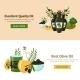 Olive Design Concept - GraphicRiver Item for Sale