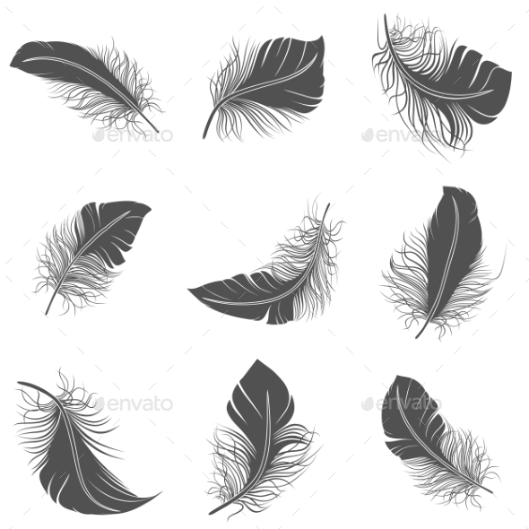 GraphicRiver Feather Black Set 10428299