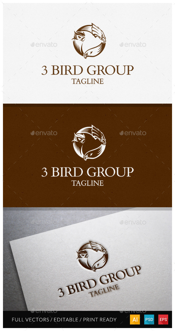 3 Bird Group Logo Template