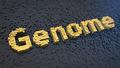 Genome cubics - PhotoDune Item for Sale