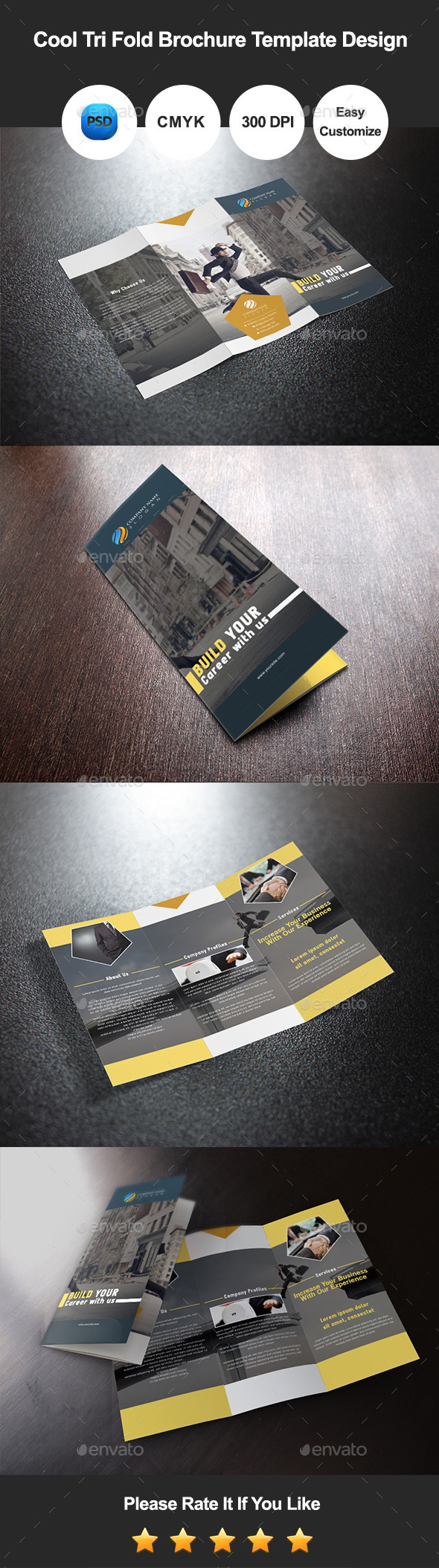GraphicRiver Cool Tri Fold Brochure Template Design 10391598
