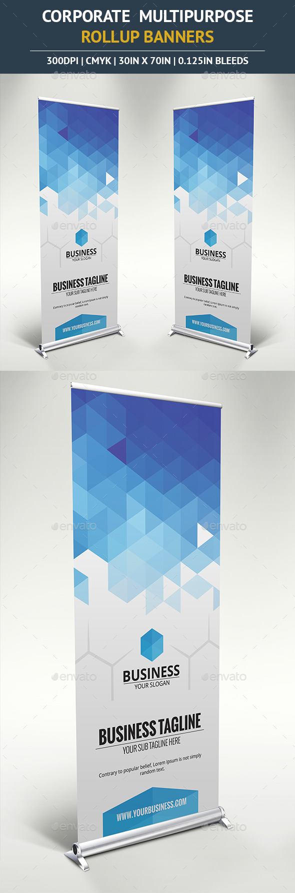 GraphicRiver Corporate Rollup Banner vol7 10390843