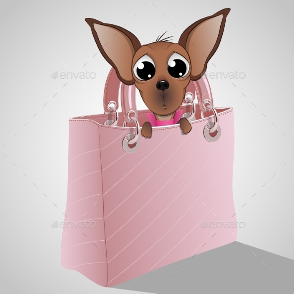 GraphicRiver Dog in a Handbag 10436839