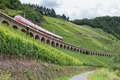 Train driving along vineyards near the river Moselle in Germany - PhotoDune Item for Sale