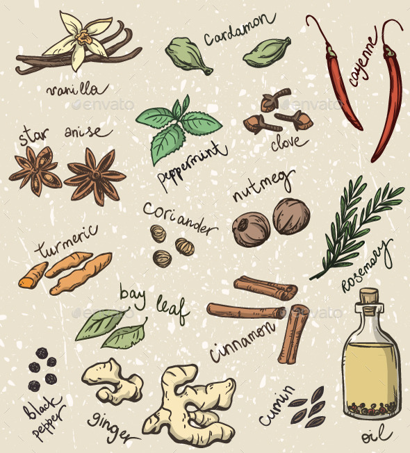 GraphicRiver Set of Spices and Herbs 10440413