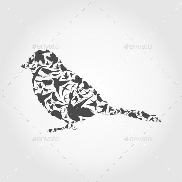 GraphicRiver Birds 10442150