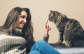 Woman playing with a cat - PhotoDune Item for Sale