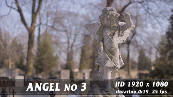 Angel No.3