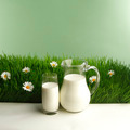 Milk jug and glass on flower field  - PhotoDune Item for Sale