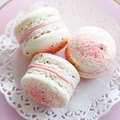 Strawberry macarons - PhotoDune Item for Sale
