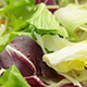 Lettuce Salad Dynamic Background - VideoHive Item for Sale