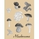 Mushrooms  - GraphicRiver Item for Sale