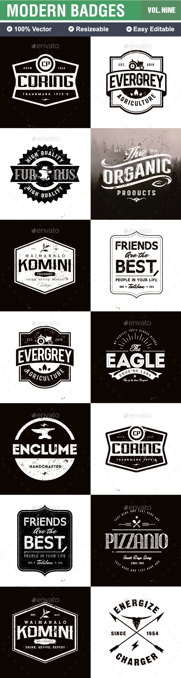 GraphicRiver Badges and Logo 10449915