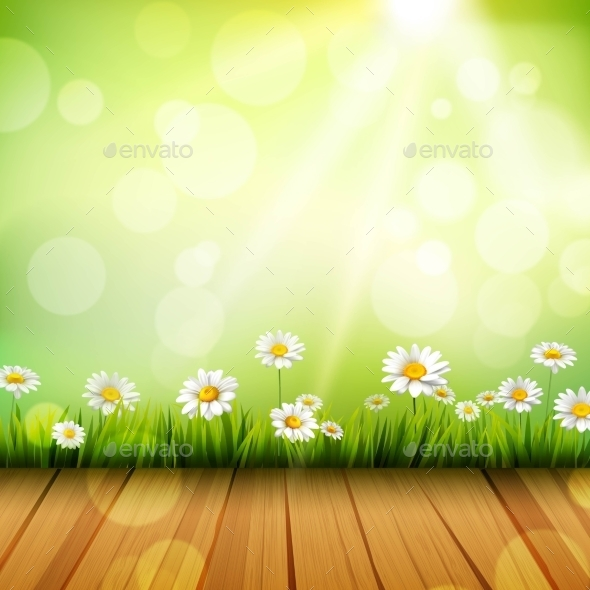GraphicRiver Spring Background With Daisies 10451649