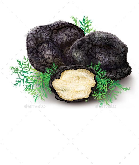 GraphicRiver Mushroom Black Truffle 10451951