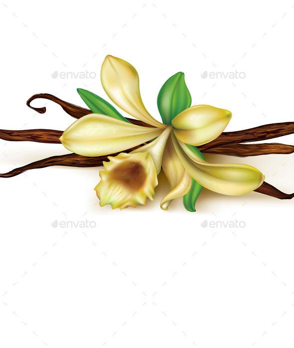 GraphicRiver Vanilla Orchid 10451969