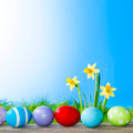 Yellow Flowers and easter eggs  - PhotoDune Item for Sale