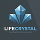 Life Crystal Logo Template - GraphicRiver Item for Sale