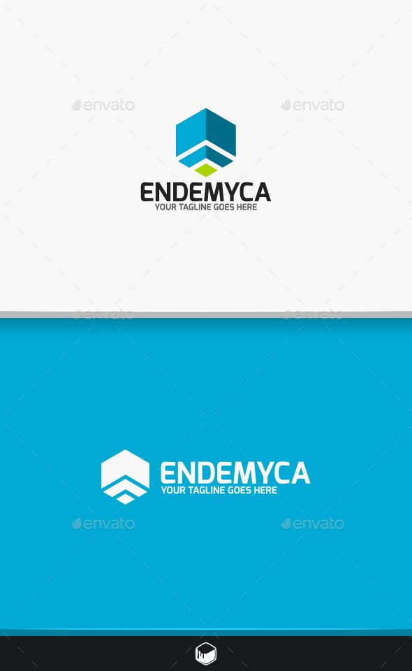 GraphicRiver Endemyca Logo 10459770