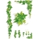 Ivy Decorations - GraphicRiver Item for Sale