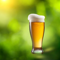 Beer in glass on natural background - PhotoDune Item for Sale