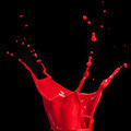 splash of red paint isolated on black - PhotoDune Item for Sale