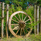 An old wagon wheel displayed as a garden decoration - PhotoDune Item for Sale