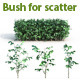 30 Bush For Scatter