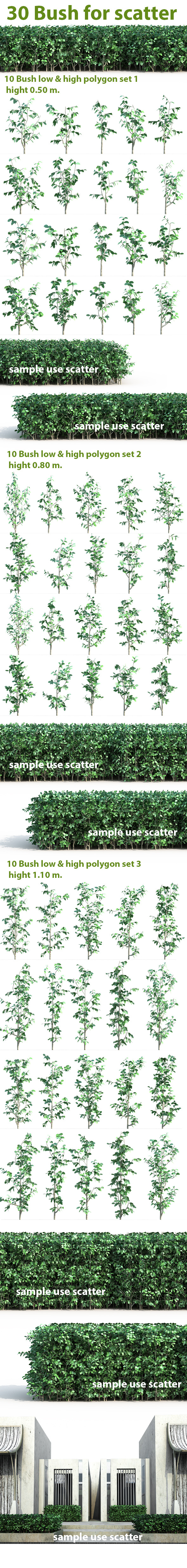 3DOcean 30 Bush For Scatter 10465338