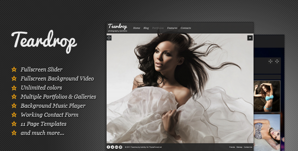 Teardrop - Flexible Photo & Portfolio WP Theme