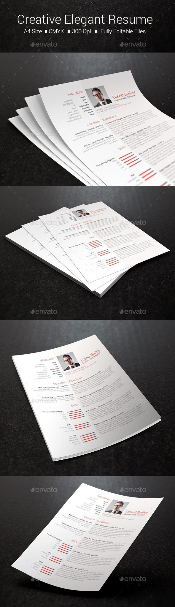 GraphicRiver Creative Elegant Resume 10469970