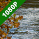 Flooded River In Autumn - VideoHive Item for Sale